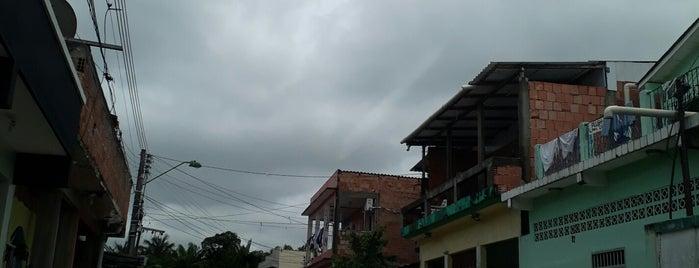 Coroado is one of locais.