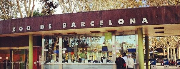 Zoo de Barcelona is one of My Barcelona!.