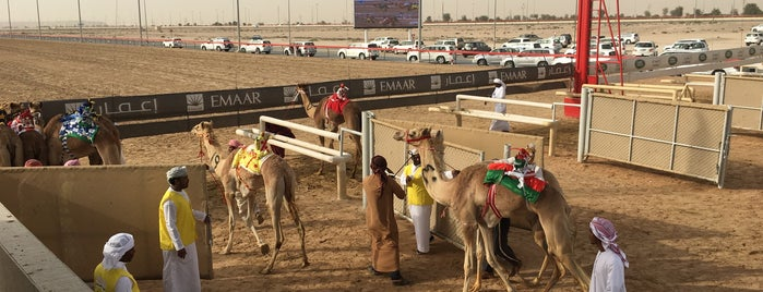 Dubai Camel Racecourse is one of World Sites.