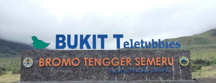 Bukit Teletubbies is one of Probolinggo dsk.