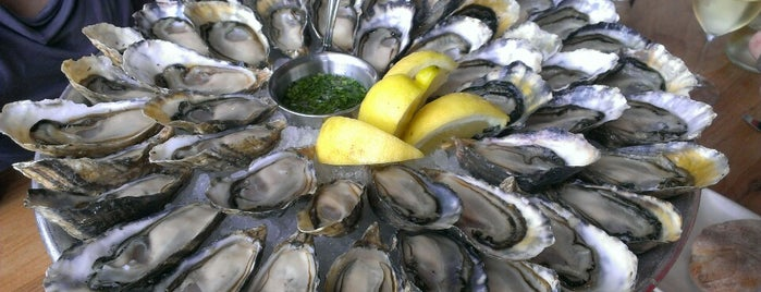 Hog Island Oyster Co. is one of QQ must eat.