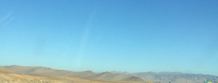 Desierto de Atacama is one of LOBO's.