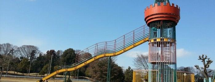 野田市スポーツ公園(木野崎公園) is one of サイクリング.