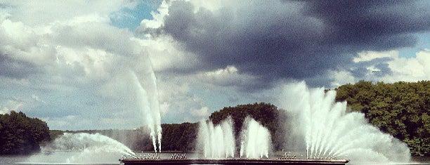 Комсомольское озеро is one of pet sounds.