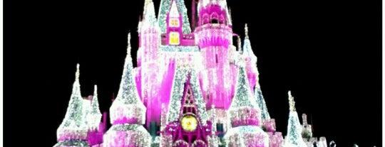 Walt Disney World Resort is one of list.
