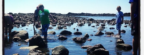 Odiorne Point State Park & The Seacoast Science Center is one of NH.