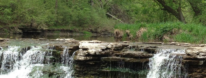 Waterfall Glen Forest Preserve is one of Naperville, IL & the S-SW Suburbs.