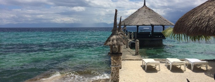 Dolphin House is one of Phillipines recommendations.