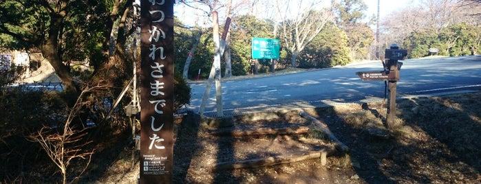 天城高原ゴルフコース is one of Top picks for Golf Courses.