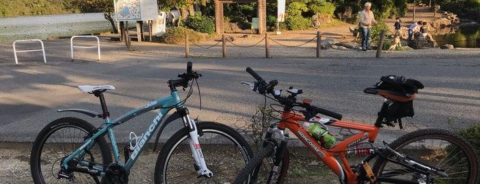 五十公野公園 is one of 日本の都市公園100選.