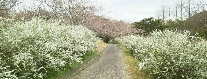 平草原 is one of 日本の都市公園100選.