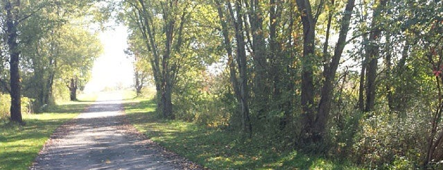 Walnut Woods Metro Park (Tall Pines Area) is one of Columbus Area Parks & Trails.