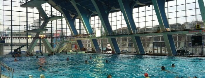 Plavecký stadion Podolí is one of Sport.