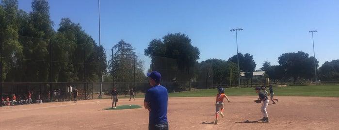 El Camino Park is one of Silicon Valley musts.