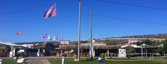 ASPC - Alaçatı Surf Paradise Club is one of Alaçatı'nın En İyileri / Best of Alacati.