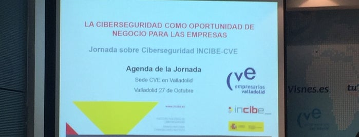 CVE is one of Consultoría/Formación.