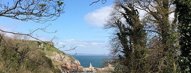 Ansteys Cove is one of Devon.
