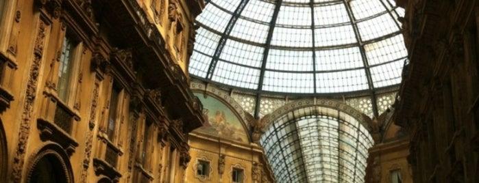 Milan(o) the BEST! = Peter's Fav's