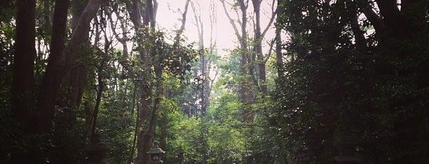 鶴岡八幡宮 祖霊社 is one of 神奈川県鎌倉市の神社.