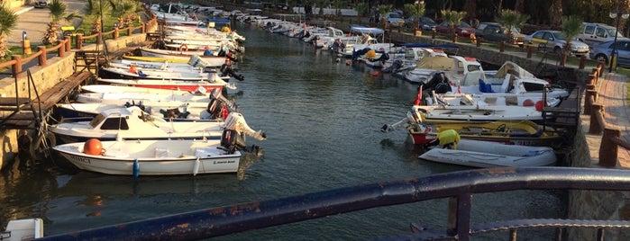 Liman Balık Restaurant is one of Orhan.