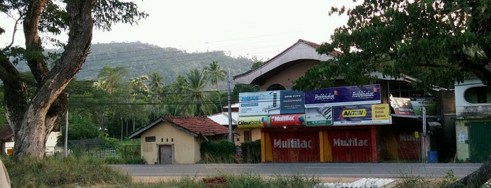 Wellawa Railway Station is one of Railway Stations In Sri Lanka.