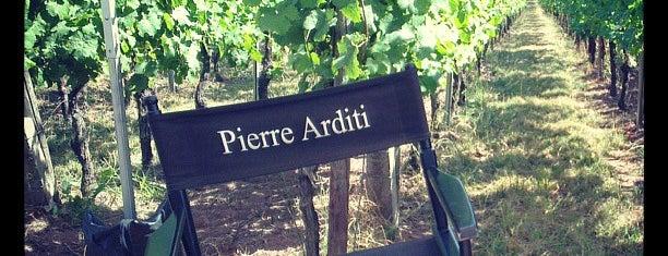 Vignobles du centre Alsace