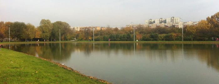 Природная зона «Ангарские Пруды» is one of Сады и парки Москвы.