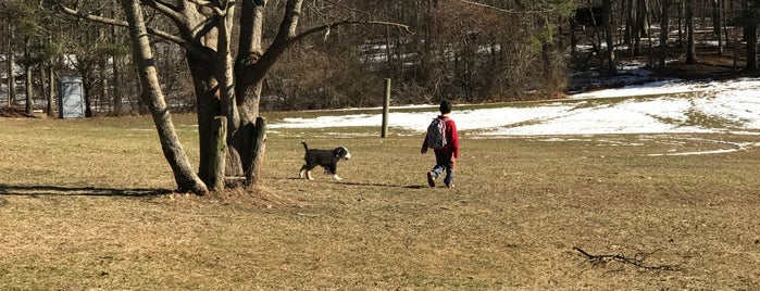 West Hills Small Dog Park is one of Everything Long Island.