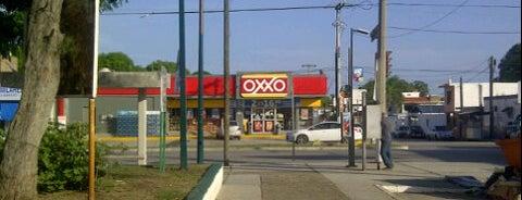 OXXO is one of MaYoR.