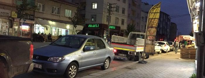 Eğitimciler Caddesi is one of Eskişehir'deki Caddeler.