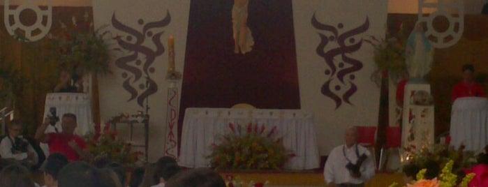 Colégio Christus is one of Faculdade.