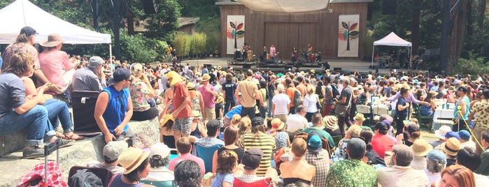 Stern Grove Festival is one of The 15 Best Places with Live Music in San Francisco.