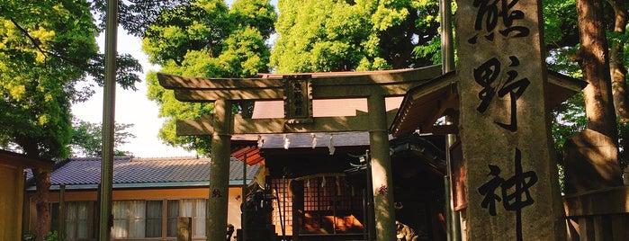 熊野神社 is one of Temples & Shrines Near Shin-Kawasaki.