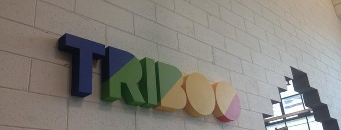 Triboo Digitale is one of Digital, Marketing & ADV.