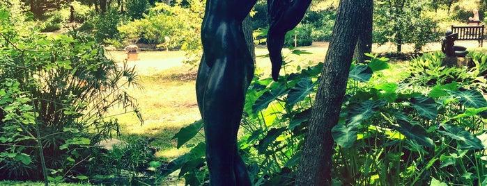 Umlauf Sculpture Garden is one of Austin Adventures.