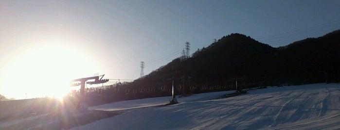 カムイみさかスキー場 is one of ski bum.