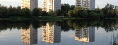 Лобненский городской пруд is one of Лобня.