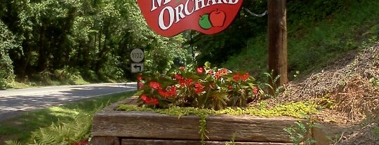 Carter Mountain Orchard is one of VA is for Wahoos.