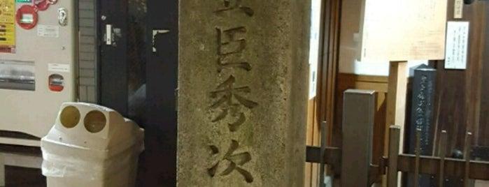 豊臣秀次墓 is one of 中世・近世の史跡.