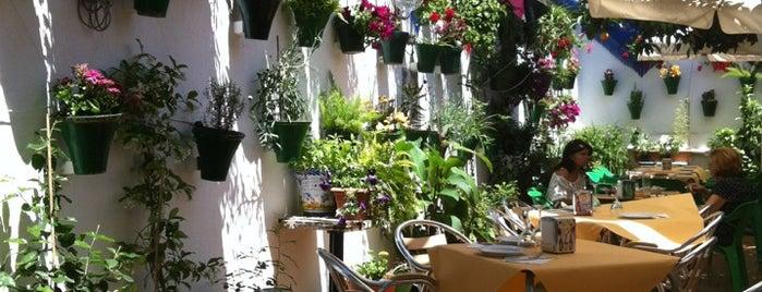 Restaurante Sociedad Plateros Maria Auxiliadora is one of Donde comer en cordoba.