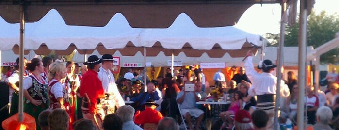 2012 Polish Festival is one of Great Festivals Across United States.
