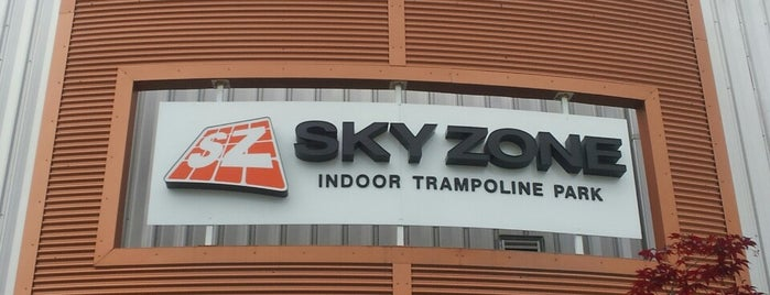 Sky Zone Indoor Trampoline Park is one of PGH to do.