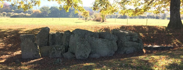 Dolmen d'Oppagne is one of Uitstap idee.