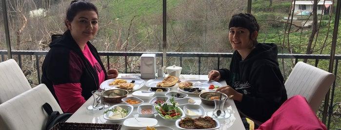 Dağyenice Kekik Cafe is one of bursa.