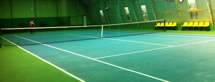 İstanbul Tenis Kulübü is one of Spor Mekanları.