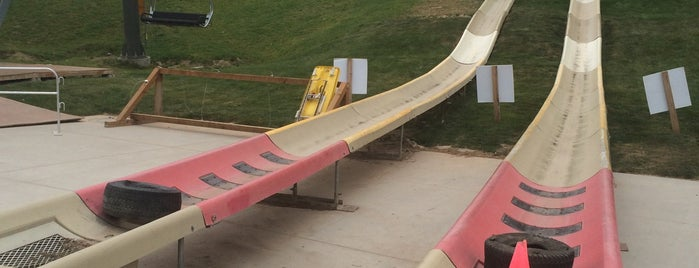 Alpine Slide is one of Jackson Hole, WY.