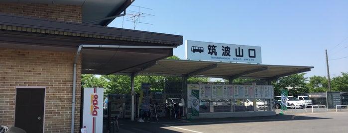 つくばりんりんロード 筑波休憩施設 is one of りんりんロードポタ♪.