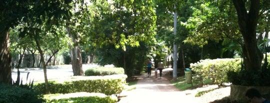 Pista de Cooper e Caminhada Braz Leme is one of Melhores de Santana e região.