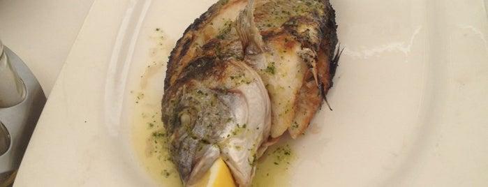 Chiringuito Tropicana is one of malaga gastronomia.