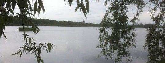 Les lieux à visiter à Condé-sur-l'Escaut